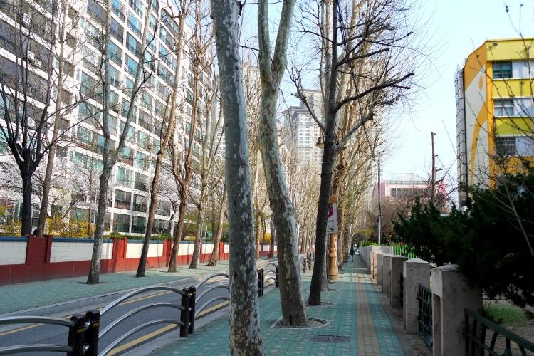Seoul_trip (13)