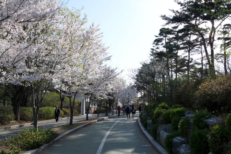 printemps-seoul