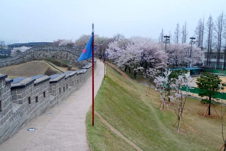 printemps-suwon